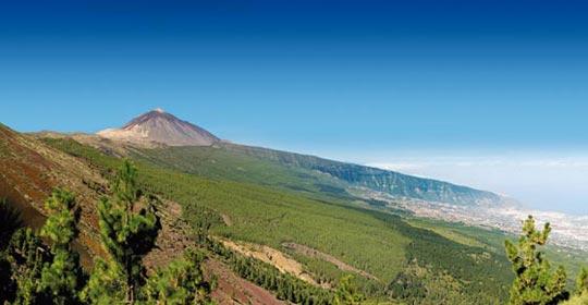 Au Coeur de Ténérife 3* - Tenerife - voyage  - sejour