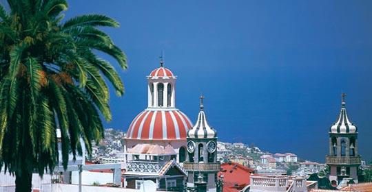 Ténérife en liberté - Tenerife