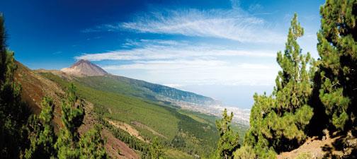 Circuit Au Coeur De Tenerife 4* - voyage  - sejour